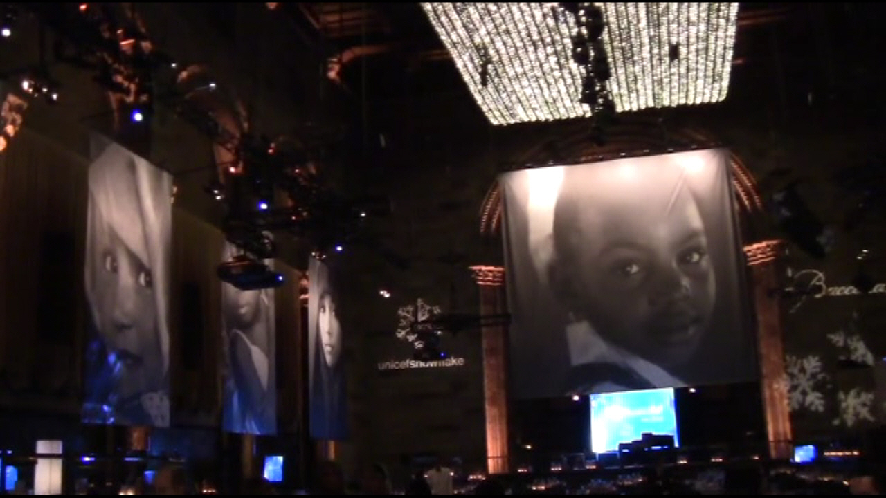 2011 Snowflake Ball - UNICEF