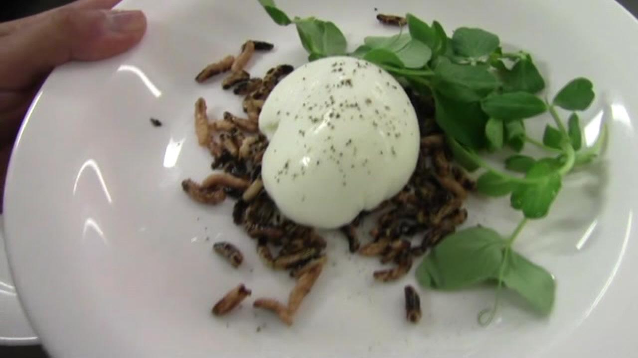 2012 Chef Shaun Hergatt - New York Culinary Experience